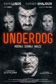 Underdog 2019