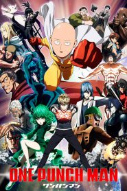 Serial One-Punch Man